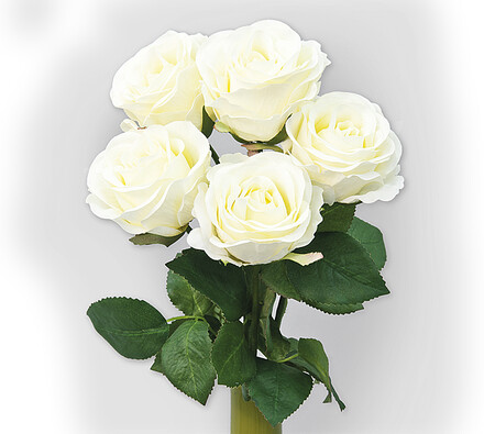 Umělá květina růže bílá sada 5 ks