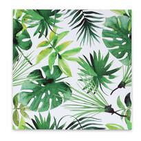 Obraz na płótnie Jungle, 50 x 50 cm