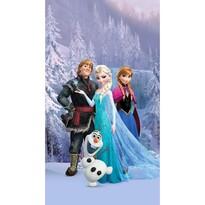 Detský zatemňovací záves Ľadové kráľovstvo Frozen, 140 x 245 cm