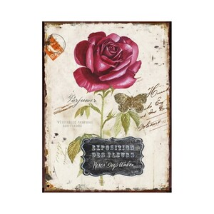 Autronic Obraz na plátně Rozkvetlá růže