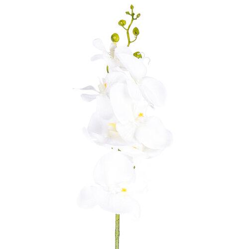 Umělá Orchidej čistě bílá, 86 cm