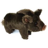 Rappa Pluszowy dzik, 20 cm