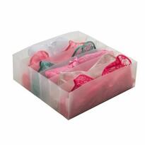 Compactor Organizer do zásuvky na spodní prádlo Optimo, 10 přihrádek