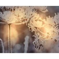 Koopman Obraz na płótnie LED Fontive, 25 x 20 cm