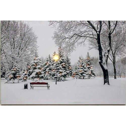 LED Obraz na plátně Zima v parku, 60 x 40 cm