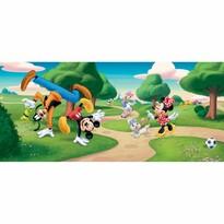 Tapeta fotograficzna dziecięca Mickey Mouse i przyjaciele, 202 x 90 cm