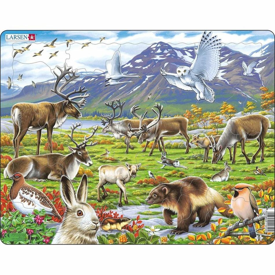 Larsen Puzzle Zvieratá v stepi, 50 dielikov
