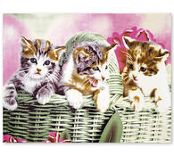 Fleecová deka kočky, 160 x 205 cm