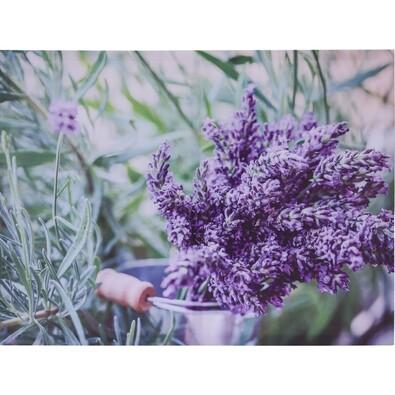 Tablou pe pânză Amiens Lavender,  78 x 58,5 cm