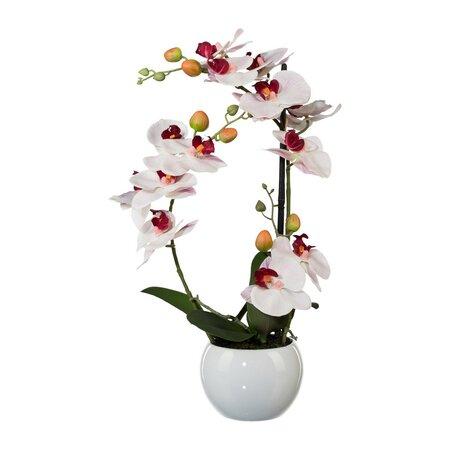 Mű orchidea kerámia virágtartóban, fehér, 42 cm