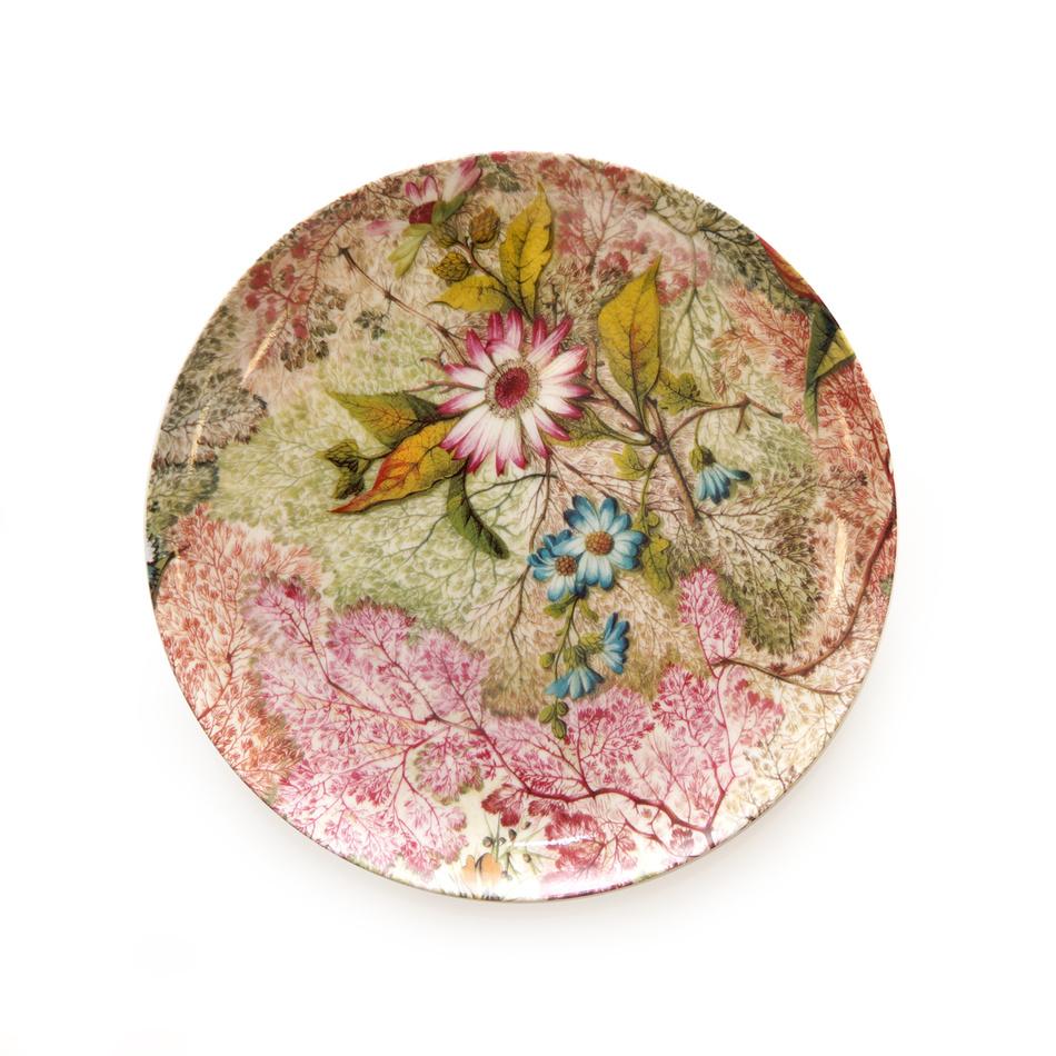 Maxwell & Williams Daydream dezertní talíř 20 cm
