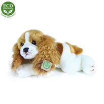 Rappa Plyšový ležiaci pes Cavalier King Charles Španiel, 30 cm