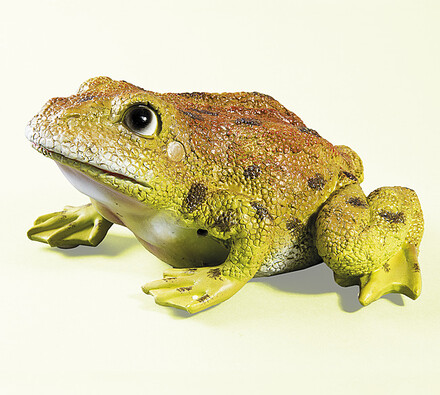 Dekorace na zahradu žába