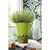 Emsa samozavlažovací květináč Fresh herbs antracit