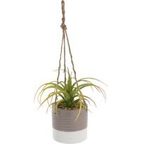 Umělá rostlina v závěsném květináči Tilda, 15 cm