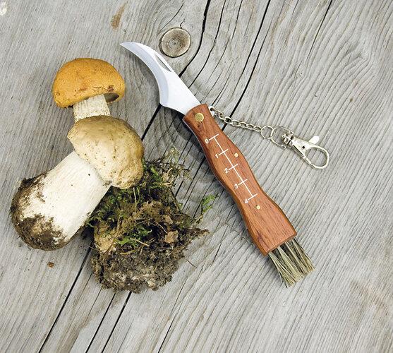Zavírací nůž na houby