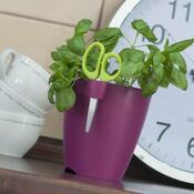 Květináč na bylinky Limes uno 1,3 l, fialová