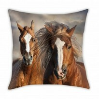 Vankúšik Animals Horses, 40 x 40 cm