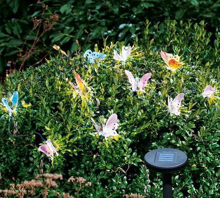 Solární světla motýli, 10 kusů
