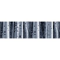 Samolepicí bordura Bříza, 500 x 14 cm