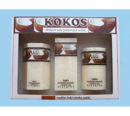 Dárková sada palmových svíček kokos, bílá
