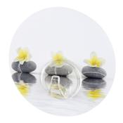 Wenko samolepící věšák Stones with Flower
