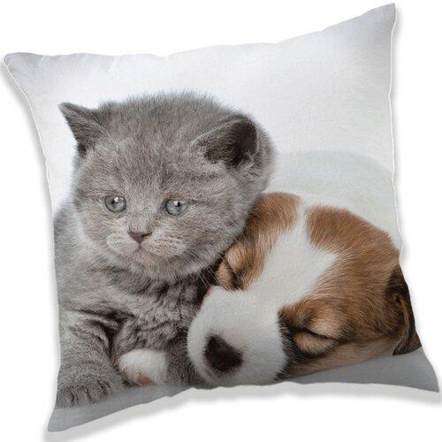 Jerry Fabrics Polštářek Puppy and Kitten, 40 x 40 cm