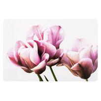 Prestieranie Tulipán 28 x 43 cm, sada 4 ks