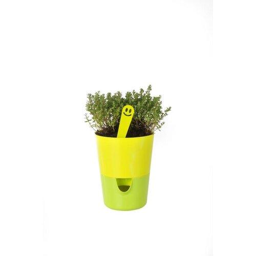 Plastia Samozavlažovací květináč Rosmarin, zelená