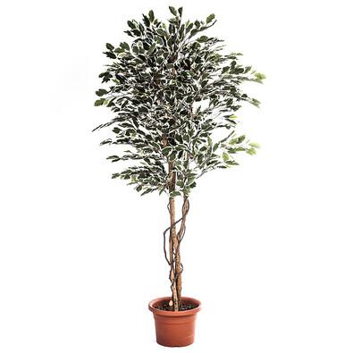Umělý strom ficus hawaii 170 cm