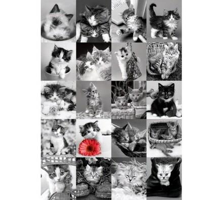 Puzzle Kočky Dino Toys, 1500 dílků, šedá
