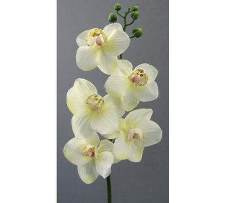 Umělá květina orchidej větvička bílá 6 ks