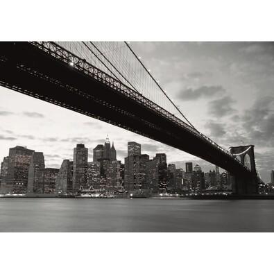 Fototapeta New York 360 x 253 cm