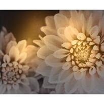 Koopman LED Obraz na plátně Vales, 25 x 20 cm