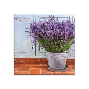 Obraz na plátně Muret Lavender 58 x 58 cm