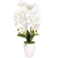 Orhidee artificială în ghiveci, alb, 14 flori, 60 cm