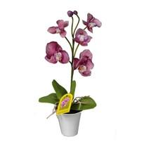 Mű orchidea virágtartóban, lila, 35 cm