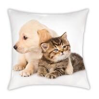 Polštářek Animals Dog and Cat, 40 x 40 cm