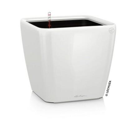 Lechuza Quadro LS 35 plastový květináč samozavlažovací bílá