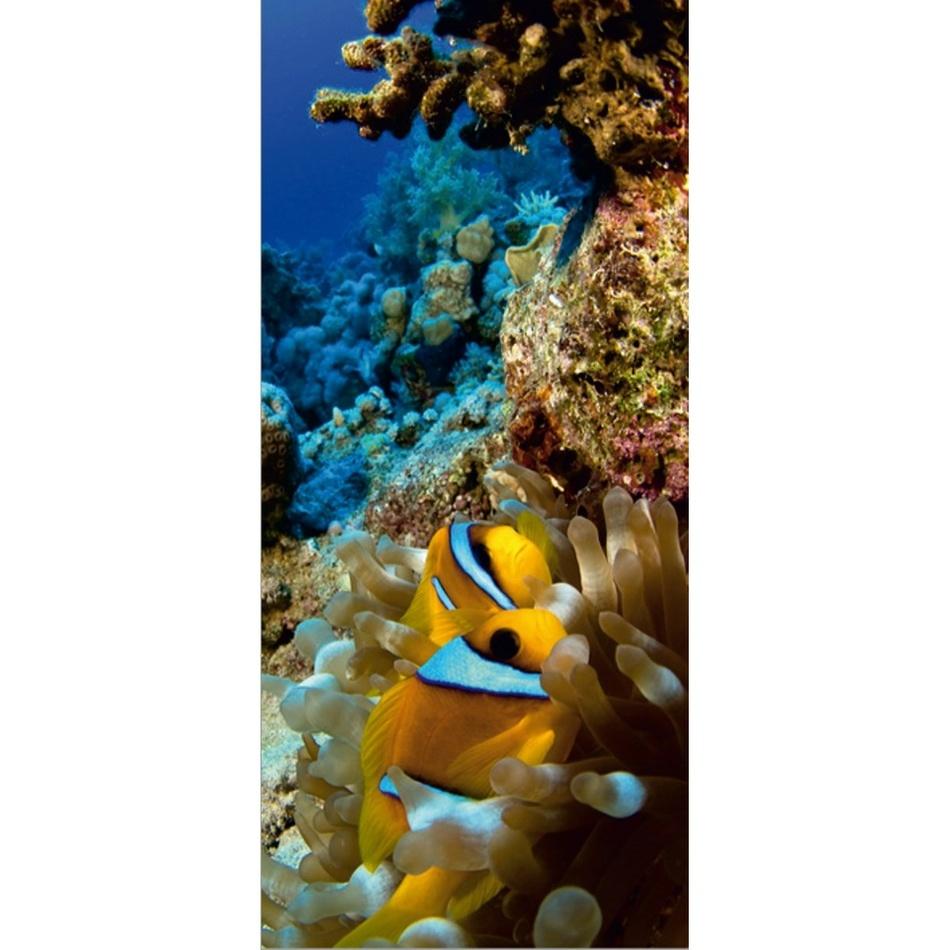 Fototapeta podmorský svet 90 x 202 cm, Hornchuch