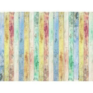 AG Art Fototapeta XXL Rayas 360 x 270 cm, 4 díly