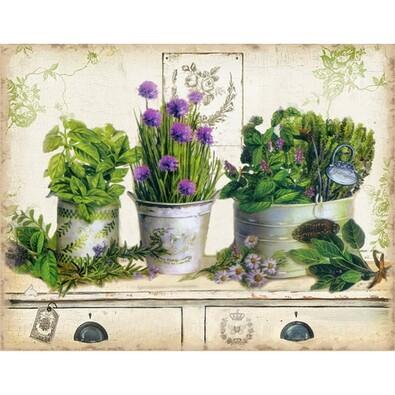 Obraz bylinky