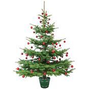 Stojan na vánoční stromeček Planet 2 hnědá