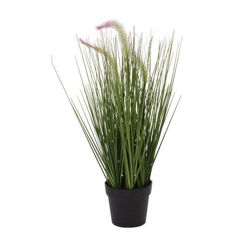 Koopman Umelá kvitnúca tráva Lotta, 46 cm