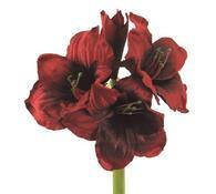 Umělá květina - Amarilis, fialová