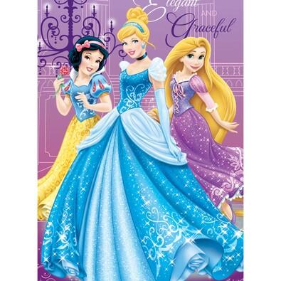 Dětská deka Princezny, 100 x 150 cm
