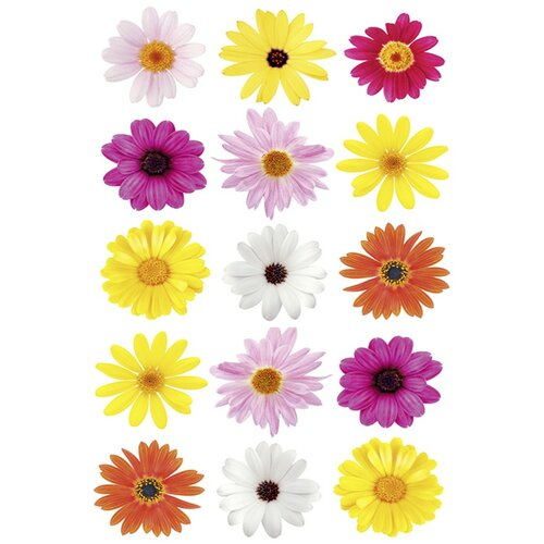 Samolepka Květy, Kleine Wolke