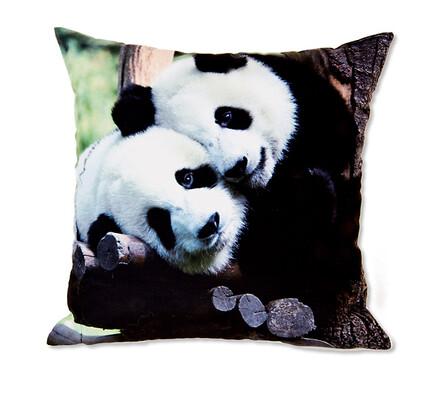 Povlaky na polštářky s fototiskem pandy, 40 x 40 cm, sada  2 ks