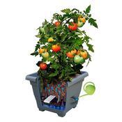 Plastia Bergamot samozavlažovací květináč 30 x 30 cm světle hnědý