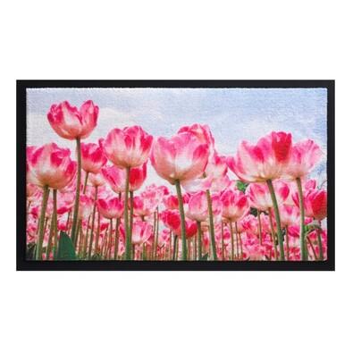 Vnitřní rohožka Image 585/003, 45 x 75 cm